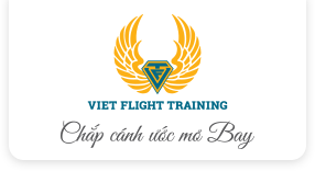 Viet Flight Training